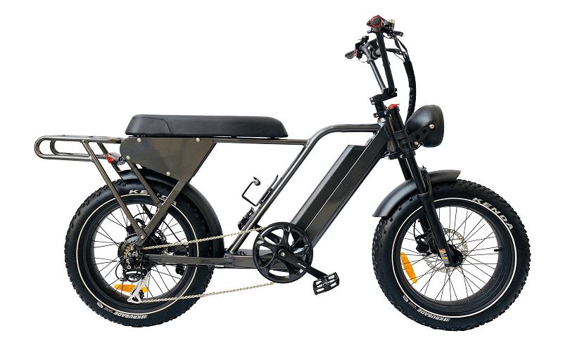 an electric fat bike